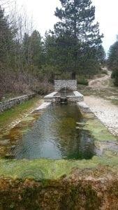 Acqua da bere. Fontanile sul Monte Tancia.