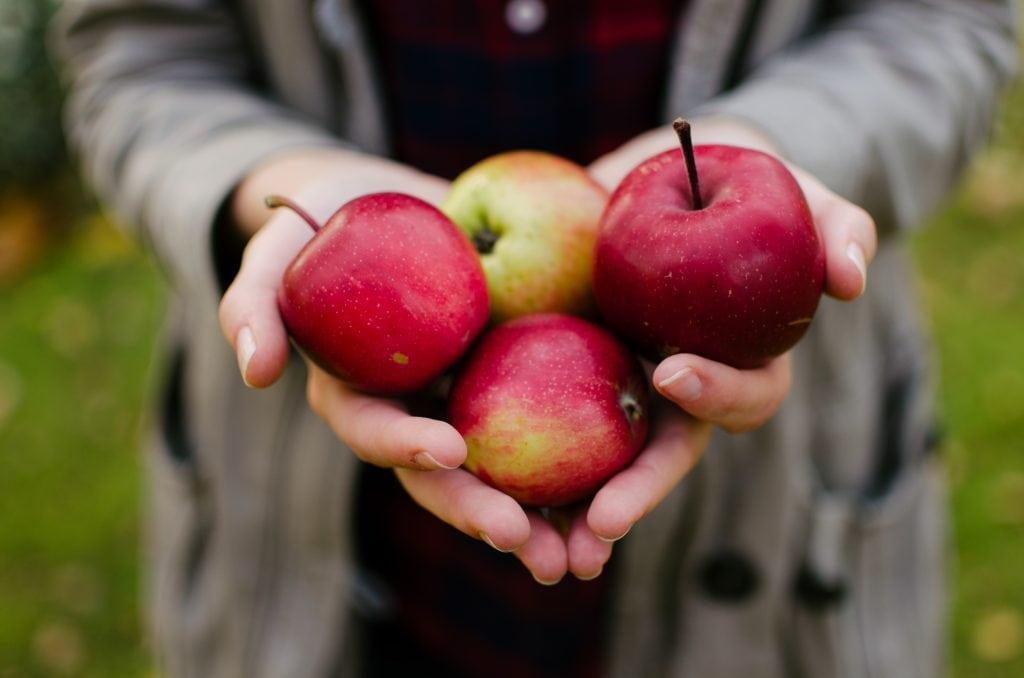 Frutta e verdura di stagione: la spesa di gennaio mela