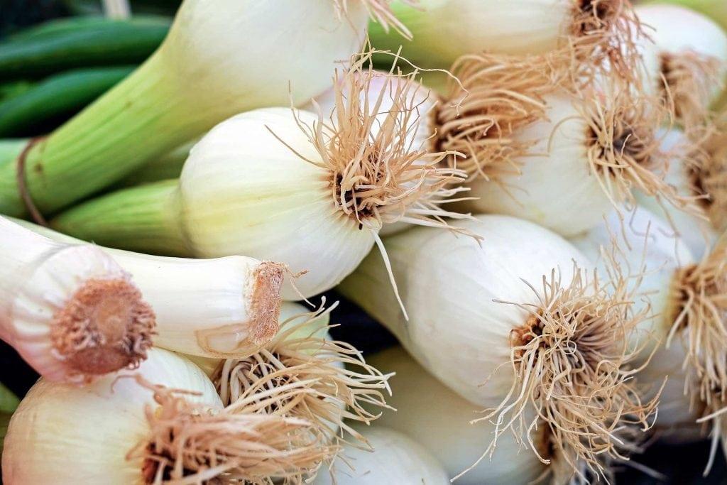 spesa di marzo verdura di stagione cipollotti