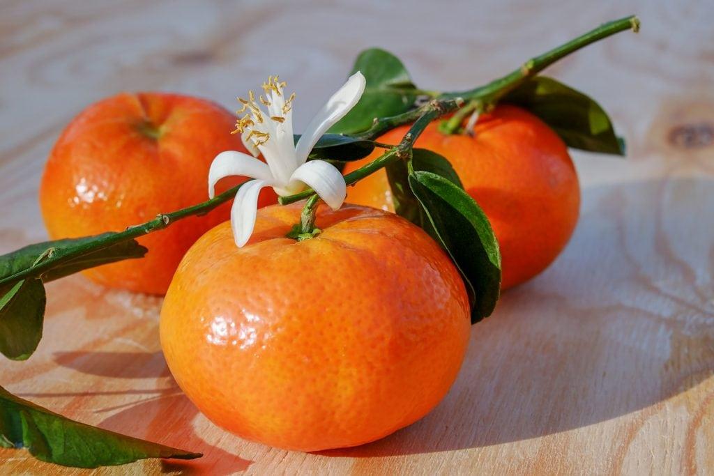 Frutta e verdura di stagione la spesa di marzo mandarini