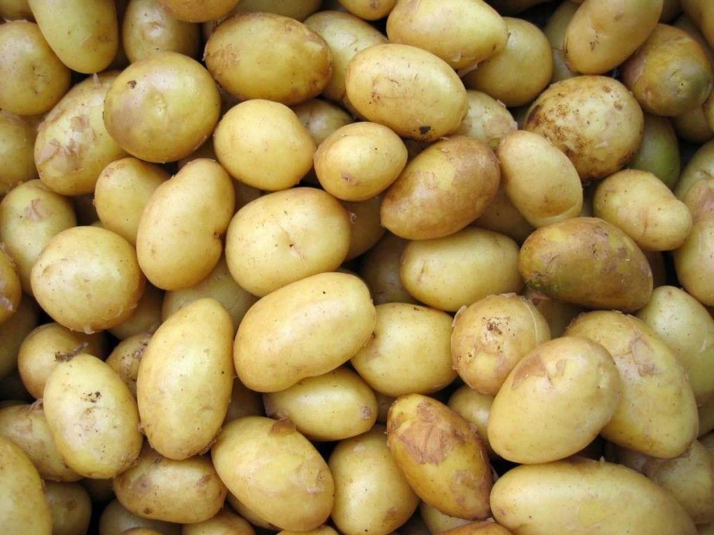 Frutta e verdura di stagione spesa maggio patate novelle