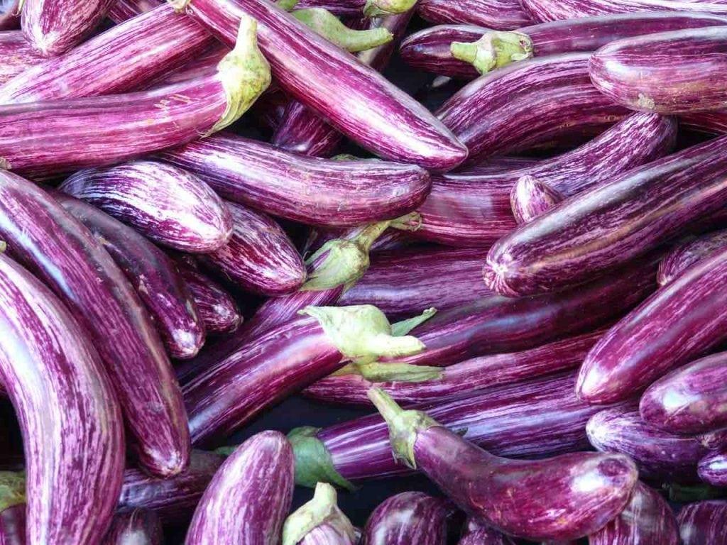 Frutta e verdura di stagione spesa di giugno melanzane