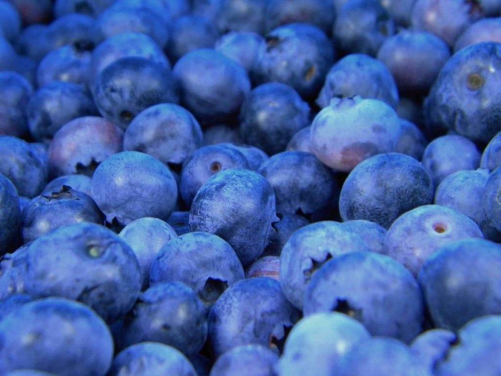 Frutta e verdura di stagione spesa di agosto mirtilli